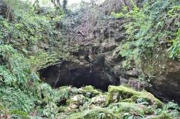 Luolaston sisäänkäynnin liepeiltä.