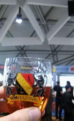belga sörfesztivál